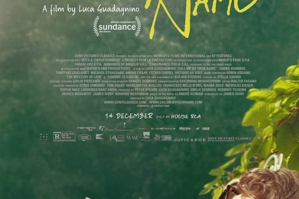 Call Me By Your Name (2017) Film Yang Terkenal Namun Kontroversial